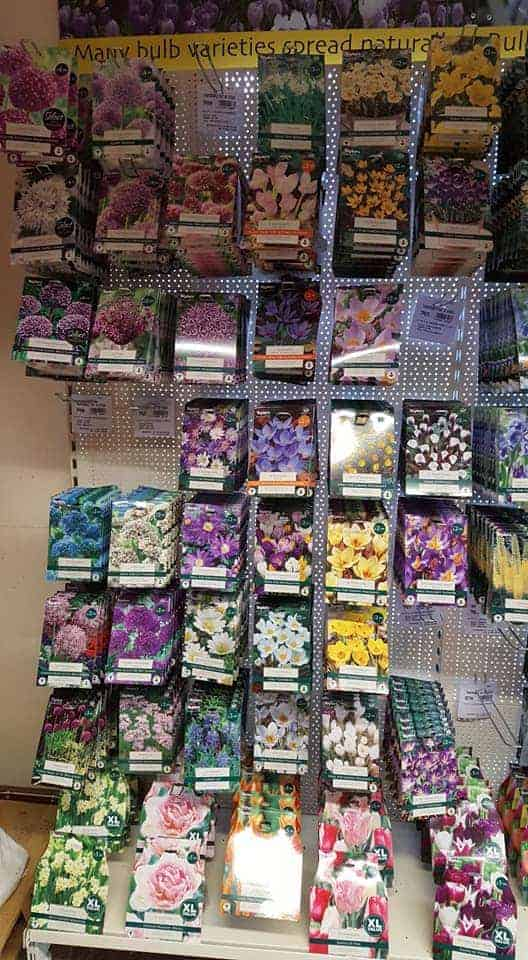 Great variety of bulbs available now at Bumbles Plant Centre