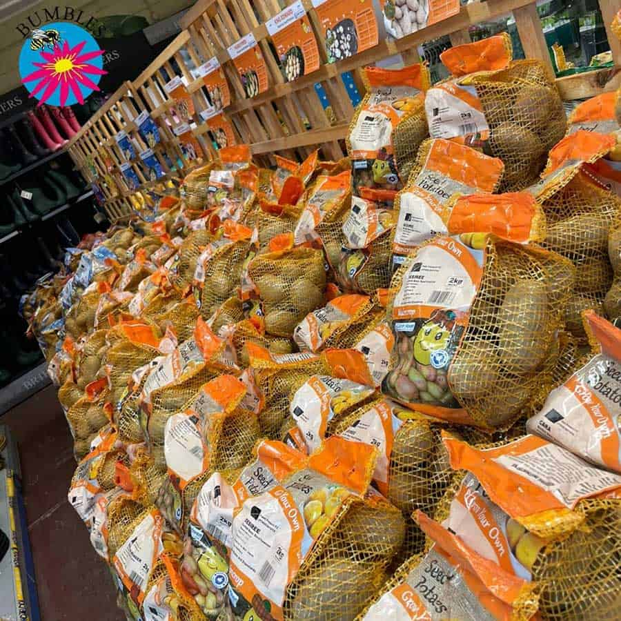 Seed potatoes, desiree, cara, Bumbles January 2021