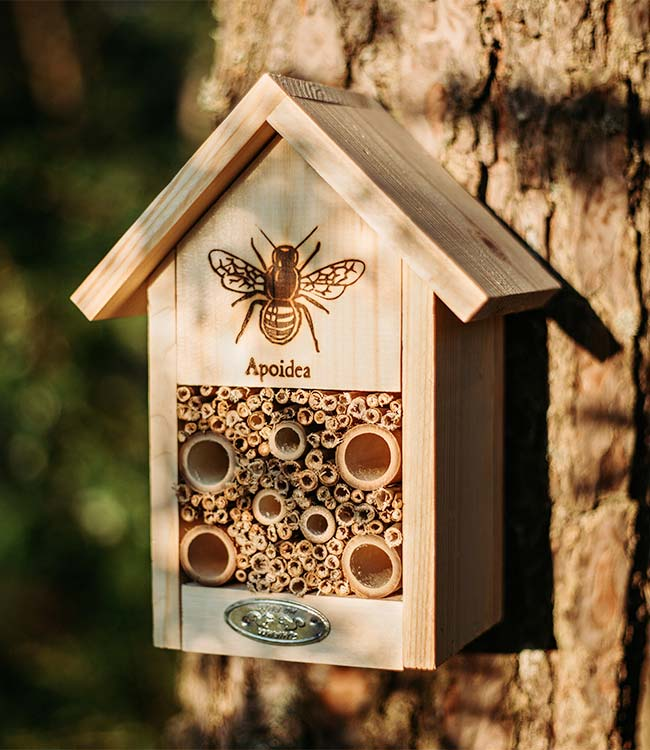 Insect hotels for Bees at Bumbles