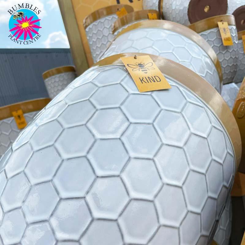 Bee Kind Honeycomb Plant Pots at Bumbles, May 2021