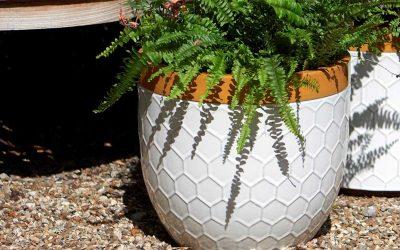 'Bee Kind' Honeycomb Plant Pots