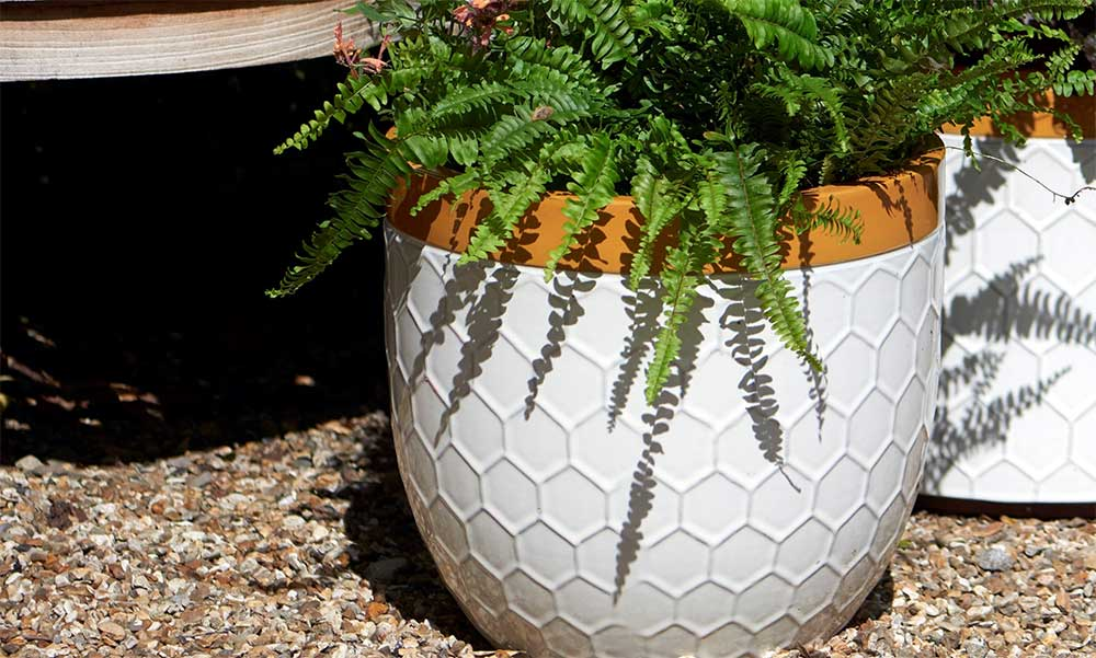 'Bee Kind' Honeycomb Plant Pots